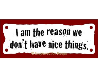 I am the Reason We Don't Have Nice Things Sign